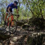 Gravel bikes: conheça tudo sobre essas bicicletas ágeis