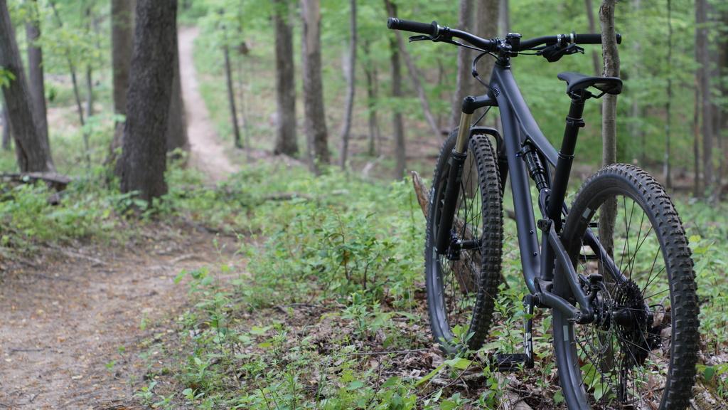 Seguro de bicicleta, MTB na trilha