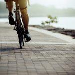 Andar de bicicleta trabalha quais músculos do corpo