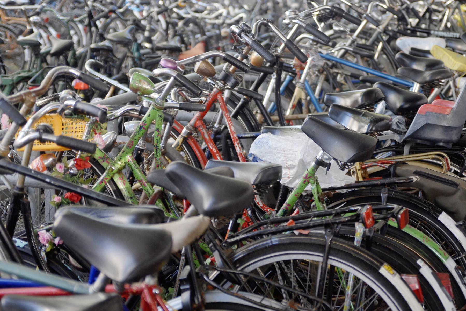 A evolução da bicicleta: conheça a história da magrela